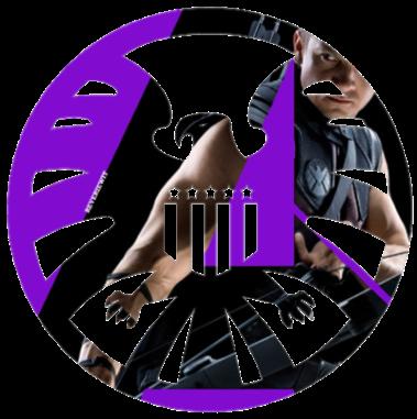 s_h_i_e_l_d_logo___hawkeye_by_reveriewit-d4gp2mu